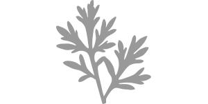 이니스프리-마이 헤어 레시피 리프레싱 트리트먼트 (지성두피용)