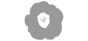이니스프리-마이 헤어 레시피 모이스춰라이징 오일 세럼 (건조모발용)