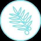 이니스프리 - 비자 시카 젤