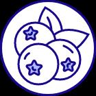 이니스프리 - 블루베리 리밸런싱 크림