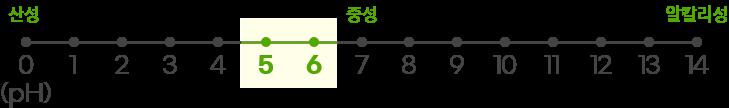 이니스프리 - 제주 사철쑥 카밍 워터